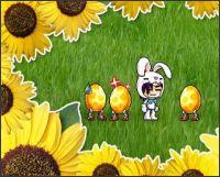 2008-03-21_Maple_Eggstar.jpg